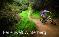 Orte Winterberg Pro-biker Giant_off-road-web_014